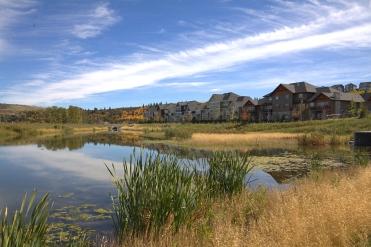 pond-in-riviera